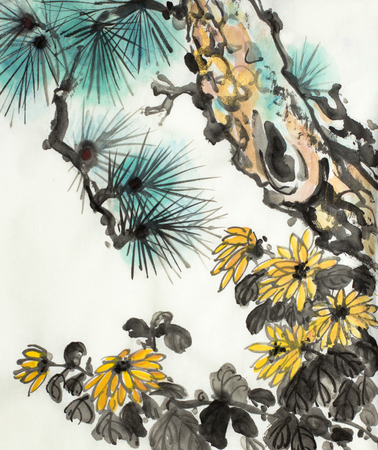 pine branch and chrysanthemum on a light background 스톡 콘텐츠