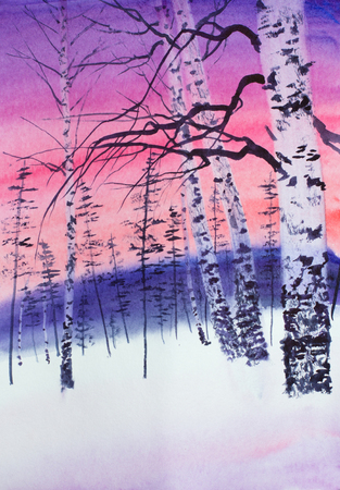 bright winter sunset in a birch grove Stock fotó