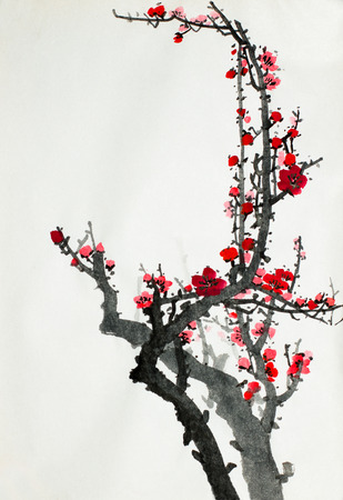 flowering branch of wild plum on a light background Imagens