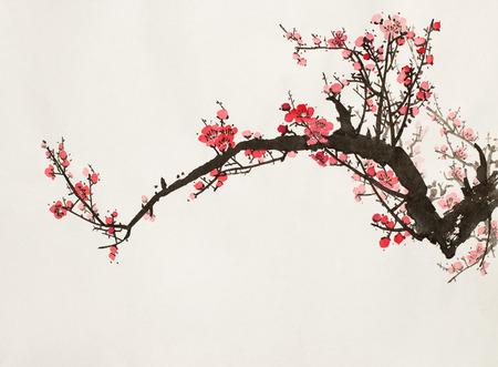 abaisser la branche de prunier sur un fond clair