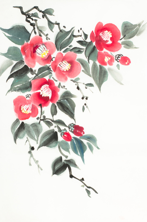 red camellia flowers on a light background Imagens