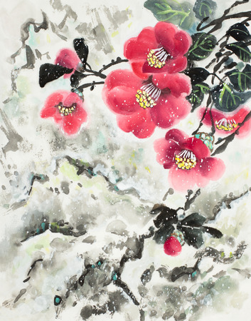 bright camellia in the snowy mountains Imagens