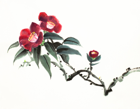 red camellia flower on a light background