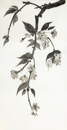 flowering branch of sakura on a light background
