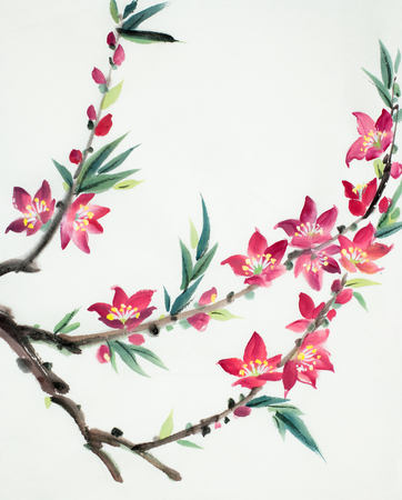 peach flowering branch on a light background