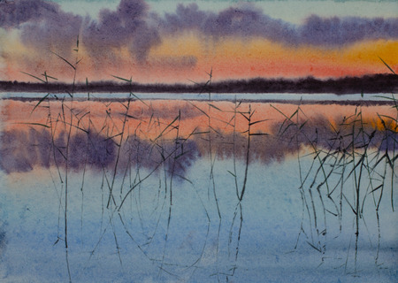 bright sunset lake and reeds Imagens