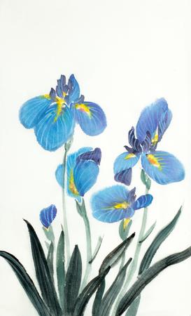 blue iris flowers on a light background