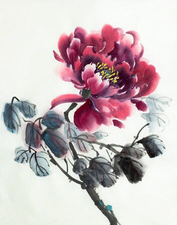 bright red peony on a light background