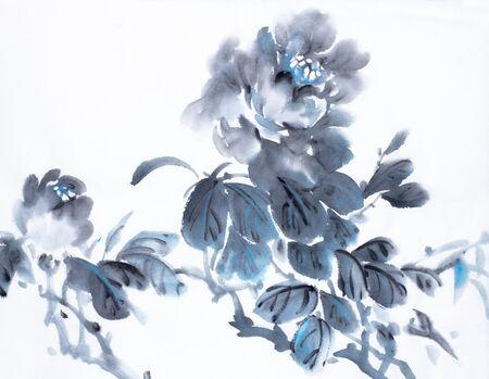 dark blue peony on a light background Stock Photo