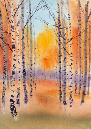 bright golden autumn in a birch park