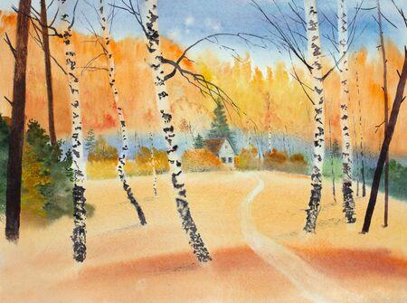 clear autumn day in a birch grove