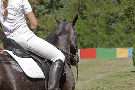 Close-up of rider and horse Stock Photo - 17902079