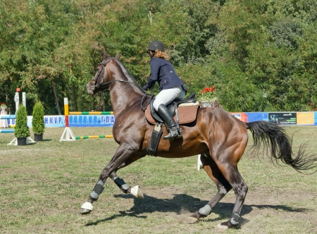 Young rider on horseback. Editorial