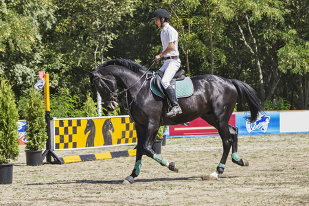 pyatigorsk: Pyatigorsk. Russia - September 05.09.2015 : Pyatigorsk. Forest Glade. The man in the white suit rider rides on black horse.