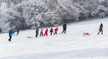 Children with sleds in bright costumes flow along white snow.