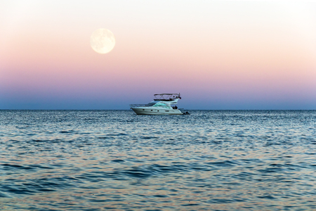 Cather in the sea on a background of of the full moon.