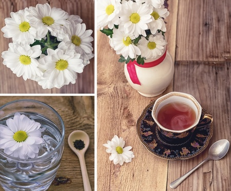 Herbal tea from the colors of chamomile Stock Photo