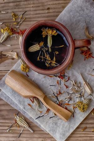 healthful: Refrescante t? de hierbas de herbares saludables Foto de archivo