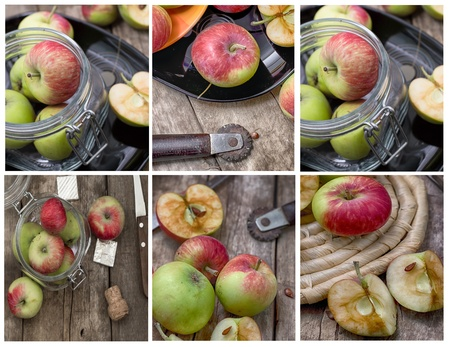 Apples collage photo