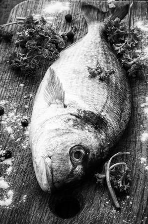dorado: mediterranean fish delicacy Dorado