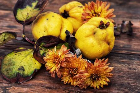 trompo de madera: jugoso, fruta de membrillo madura en la parte superior de madera