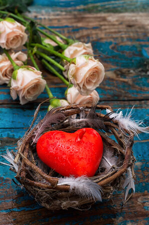 par�?s: primavera nido de p�jaro como s�mbolo de San Valent�n