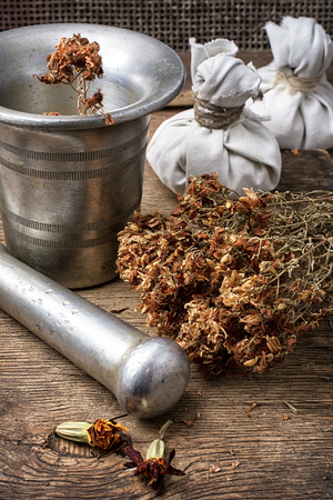 iron mortar and pestle with dried medicinal herb in the rural style.Selective focus photo