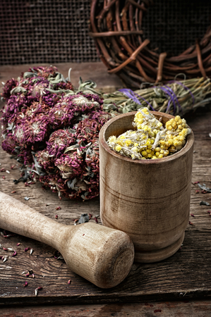 traditional healer: beam ligament healing herbs traditional medicine and pestle.Selective focus.photo tinted