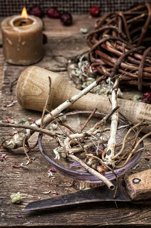 traditional medicine: beam ligament healing herbs traditional medicine and pestle.Selective focus Stock Photo