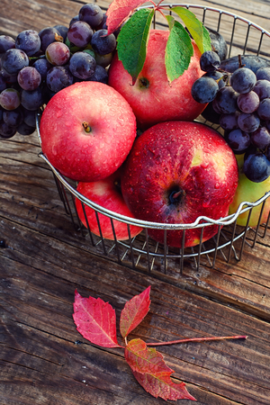 fruits in a basket: Ripe fruits in the iron basket Stock Photo