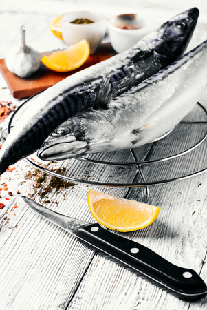 thawed: Thawed fresh fish mackerel with spices and marinade.Photograph high key Stock Photo