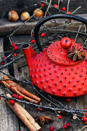 piquancy: Red metal kettle,branches with berries on wooden background
