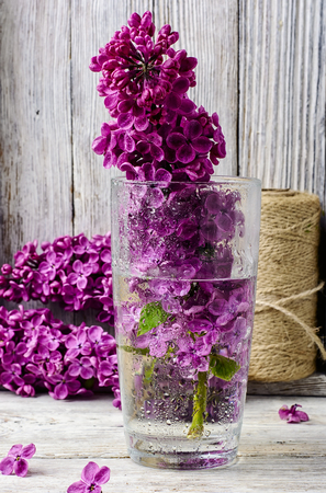 inflorescence: inflorescence may lilacs in a glass vase with water Stock Photo