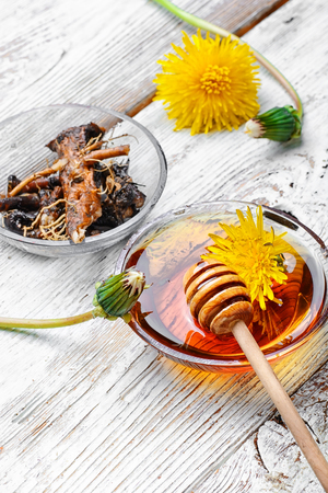 expectorant: bowl of healing infusion of the flower and the root and spring of the dandelion