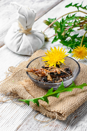expectorant: National therapeutic agent from a flower and dandelion root
