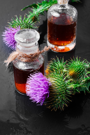elixir: Flowers medicinal plants, the Thistle and the healing elixir from them