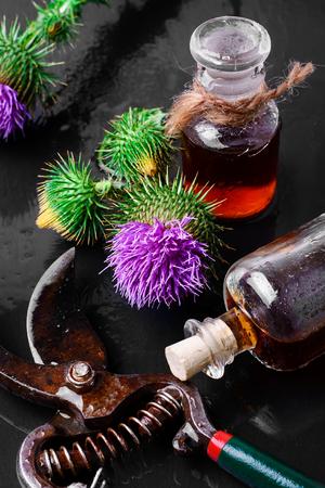 elixir: Flores plantas medicinales, el cardo y el elixir de curación de ellos