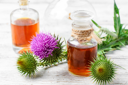 tincture: buds plant Thistle, and bottle of medicinal tincture Stock Photo