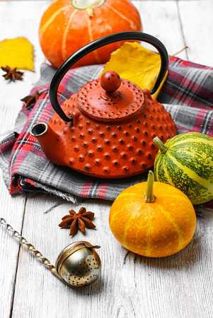 for tea: Stylish kettle for tea and autumn pumpkin