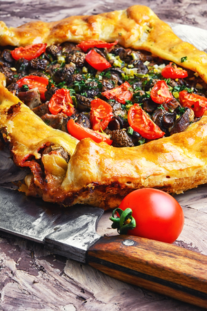 Delicious meat pie stuffed with mushrooms and tomato. Stock Photo