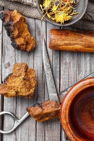 砕いた天然チャーガ バーチ菌の部分、乾燥された花のカレンダー。 写真素材