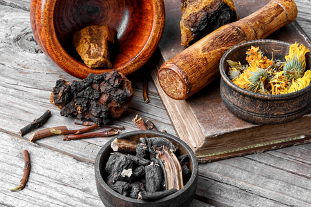 Medicinal herbs of folk medicine comfrey, birch mushroom and calendula. Stock Photo