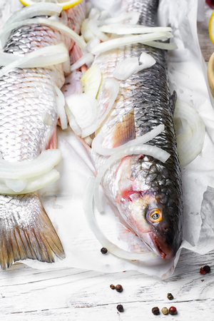two carcasses of large fish for cooking with spices