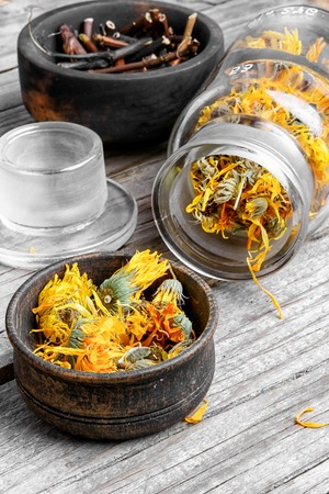 curative: Glass pharmacy jar with dried summer flowers of calendula for therapy.