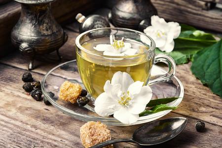 popular: popular Chinese green tea with white Jasmine flowers