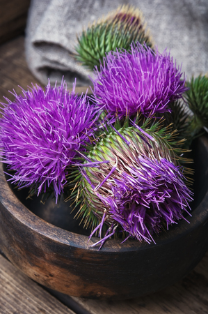Wild medicinal plant thistle on wooden surface Stock Photo - 82014605
