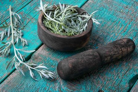 Mortaio di legno con pestello con un ramo di wormwood Archivio Fotografico