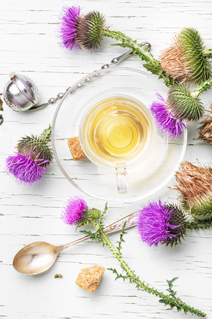 healer: glass cup on saucer with tea from a medicinal inflorescence thistle Stock Photo