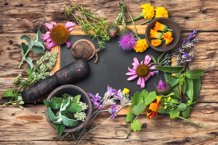 healing herbs, plants and flowers on a vintage wooden background