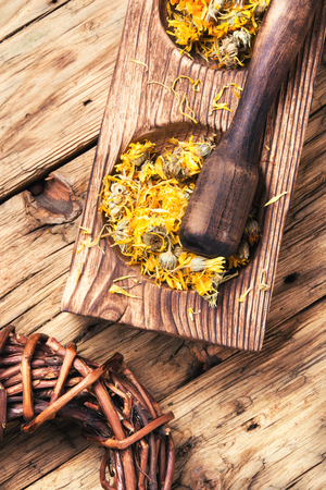 medicinal herbs and plants in wooden mortar with a pestle Foto de archivo